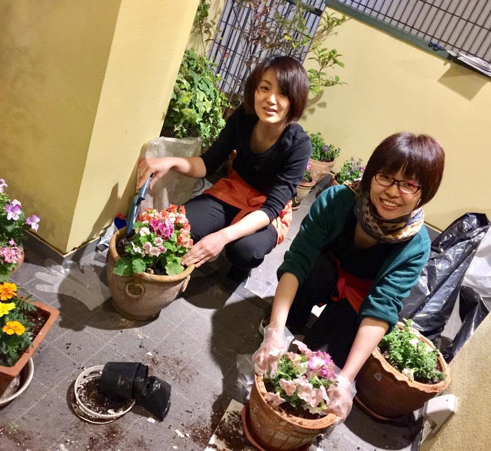 春♫サロンのお花を植え替えました!