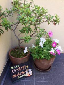 お花に囲まれた駅前エステサロン✿